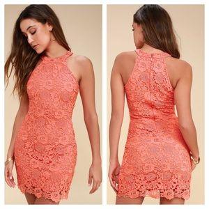 Lulu's Love Poem Coral Orange Lace Dress Size S